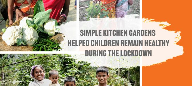 Kitchen Gardens Become Food Security during the Pandemic